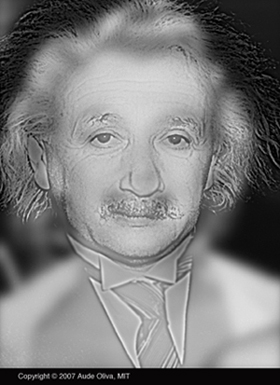 Upclose this is an image of Albert Einstein, but take a few steps back and Marilyn Monroe appears.